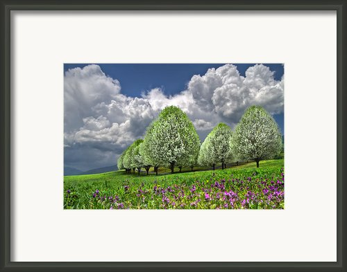 Billows Framed Print By Debra And Dave Vanderlaan