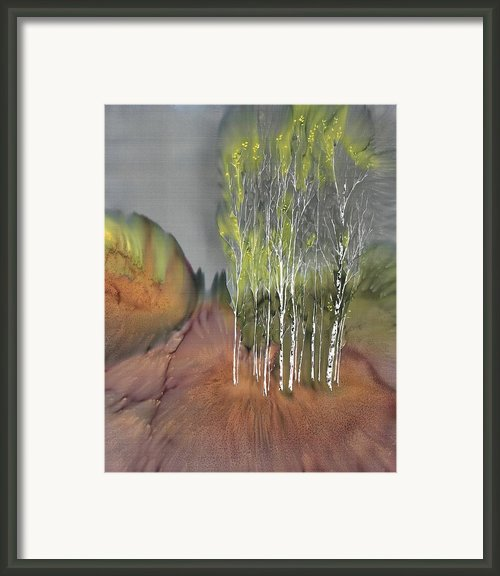 Birch Grove 1 Framed Print By Carolyn Doe