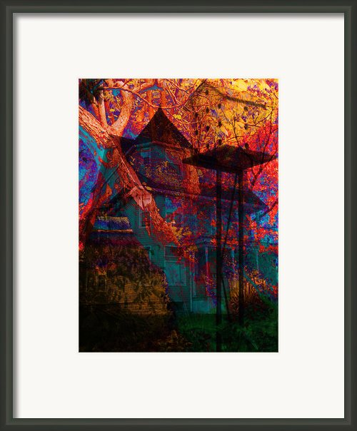 Bird House I Framed Print By Lisa Noneman