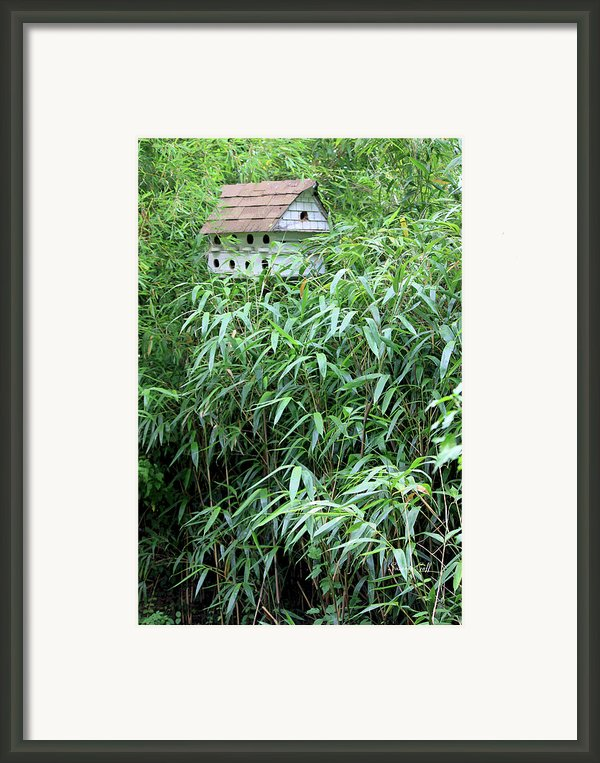 Birdhouse Collection Ii Framed Print By Suzanne Gaff