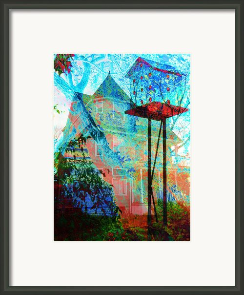 Birdhouse Ii Framed Print By Lisa Noneman