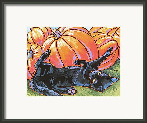 Black Cat Playing Framed Print By Nadi Spencer