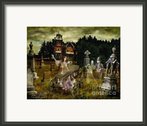 Black Fly Framed Print By Tom Straub