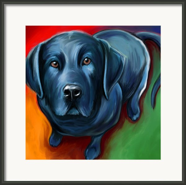 Black Lab Framed Print By David Kyte