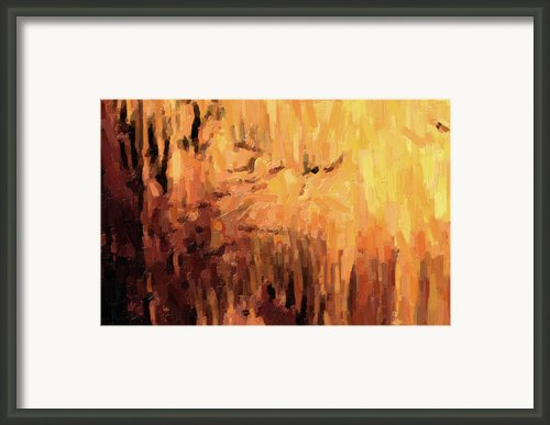 Blanchard Springs Caverns-arkansas Series 01 Framed Print By David Allen Pierson
