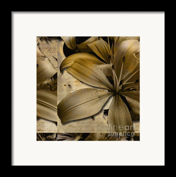 Bliss Ii Framed Print By Yanni Theodorou