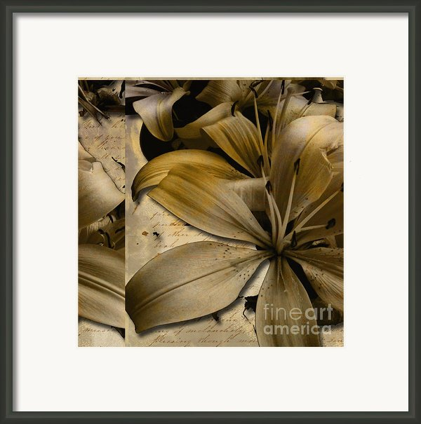 Bliss Iii Framed Print By Yanni Theodorou