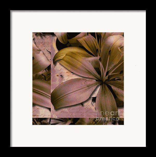 Bliss Framed Print By Yanni Theodorou