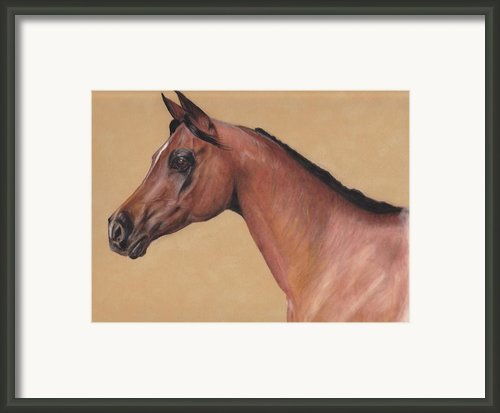 Blood Arabian Queen Framed Print By Loreen Pantaleone