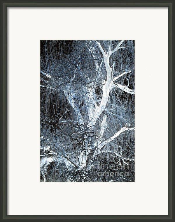 Blue Snow Framed Print By Kathleen Struckle