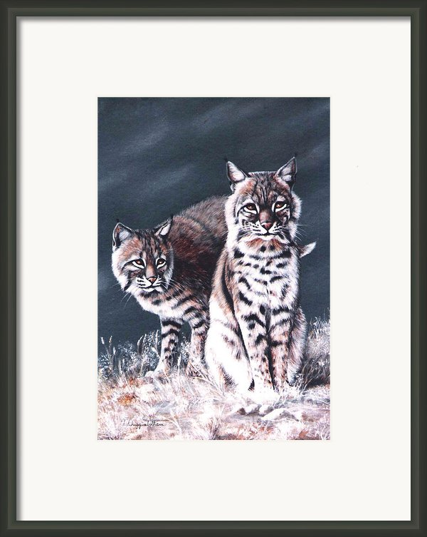 Bobcats In The Hood Framed Print By Didi Higginbotham