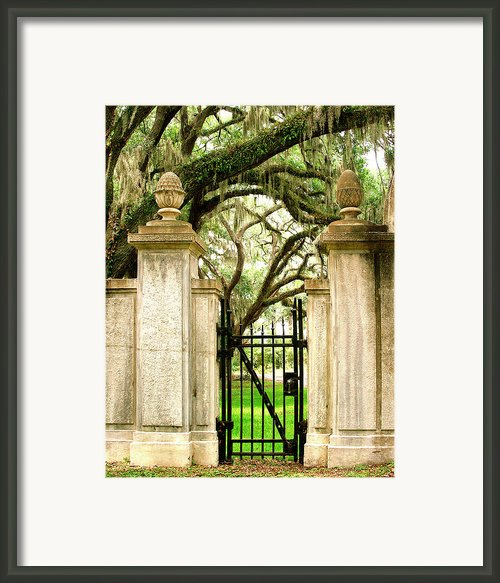 Bonaventure Cemetery Framed Print By William Dey