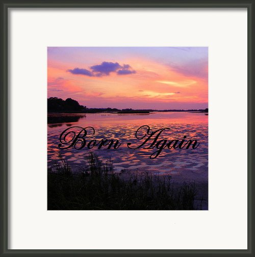 Born Again  Framed Print By Sheri Mcleroy
