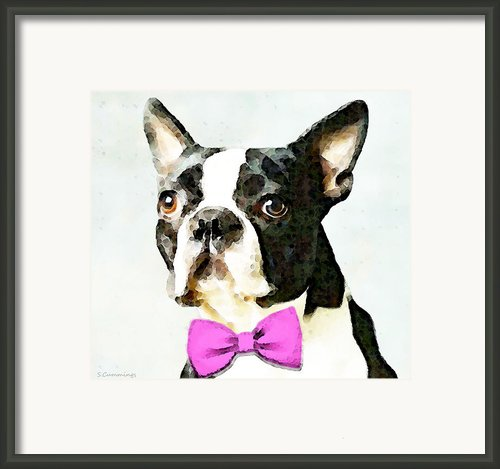 Boston Terrier Art - The Nervous Groom Framed Print By Sharon Cummings