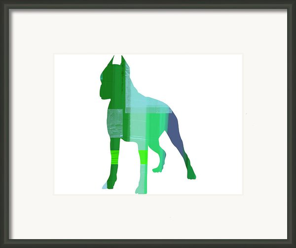 Boxer 1 Framed Print By Irina  March