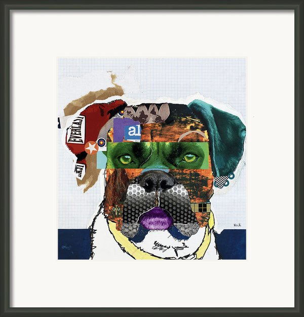 Boxer  Framed Print By Michel  Keck