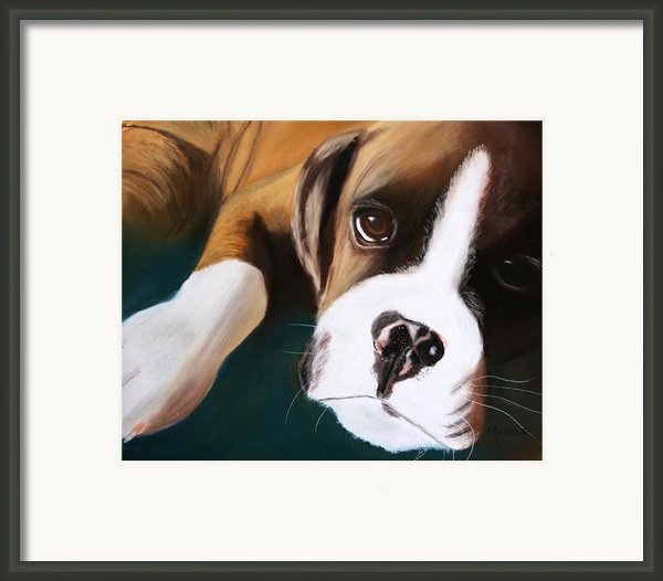 Boxer Framed Print By Michele Turney