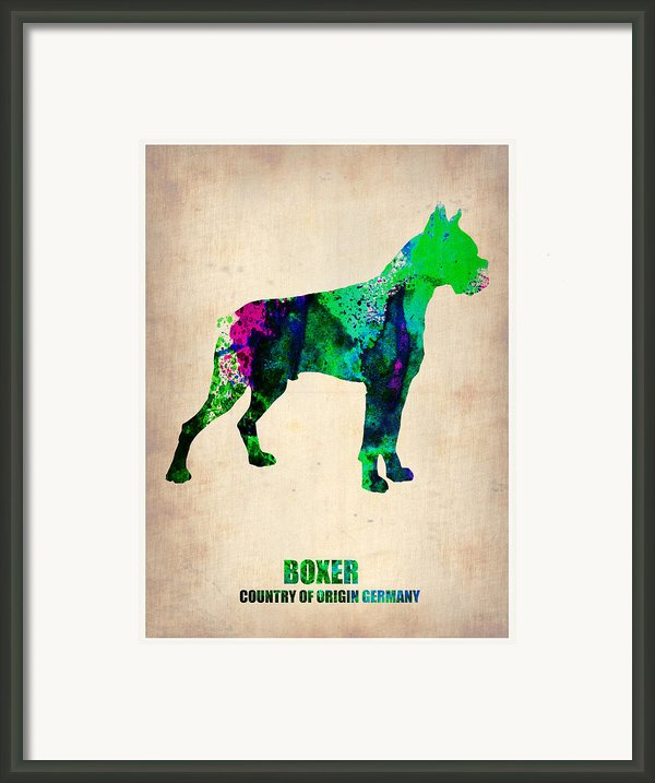 Boxer Poster Framed Print By Irina  March