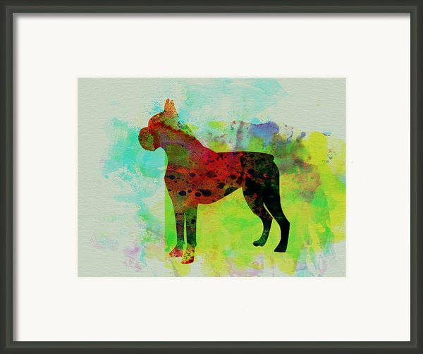Boxer Watercolor Framed Print By Irina  March