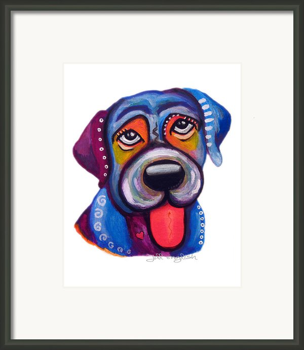 Brad The Labrador Framed Print By Jill English