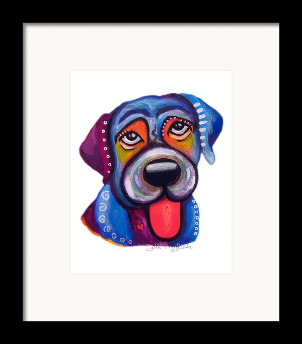 Brad The Labrador Framed Print By Jill English