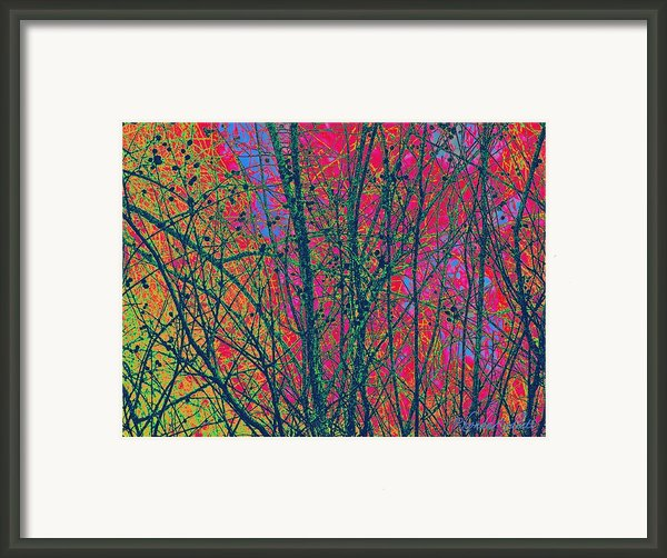 Branches Framed Print By Yomamabird Rhonda