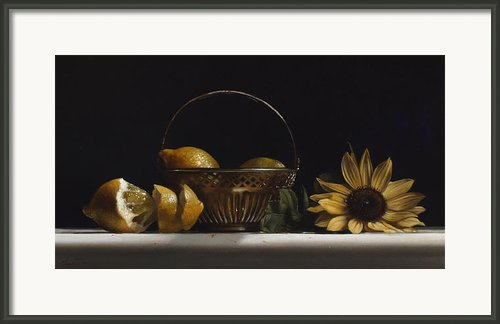 Brass Basket No.2 Framed Print By Larry Preston