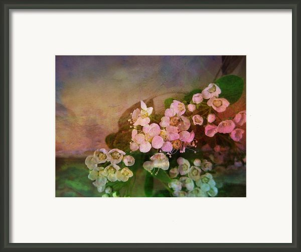 Bridal Memories Framed Print By Shirley Sirois