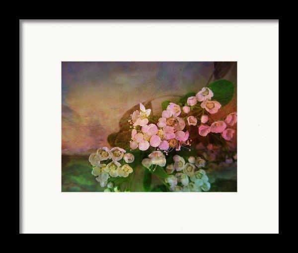 Bridal Memories Framed Print By Shirley Sirois