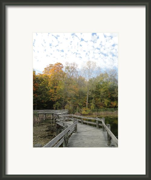Bridge Into Autumn Framed Print By Guy Ricketts