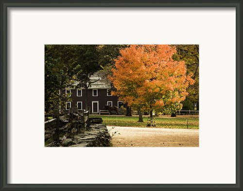 Bright Orange Autumn Framed Print By Jeff Folger