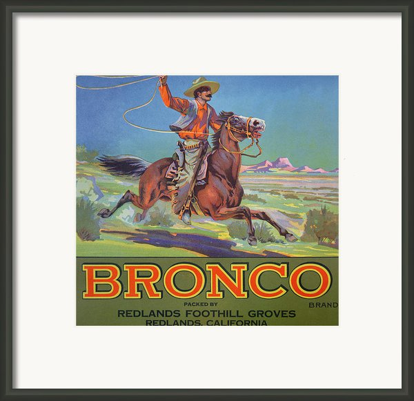 Bronco Oranges Framed Print By American School