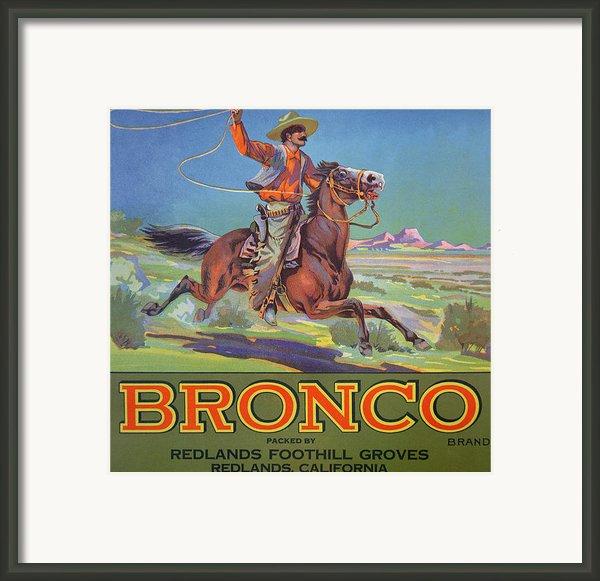 Bronco Oranges Framed Print By American School