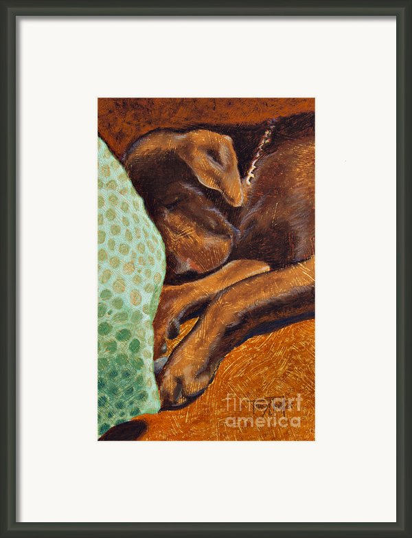 Brown Dog Framed Print By Tracy L Teeter