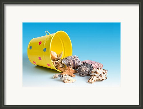 Bucket Of Seashells Still Life Framed Print By Tom Mc Nemar