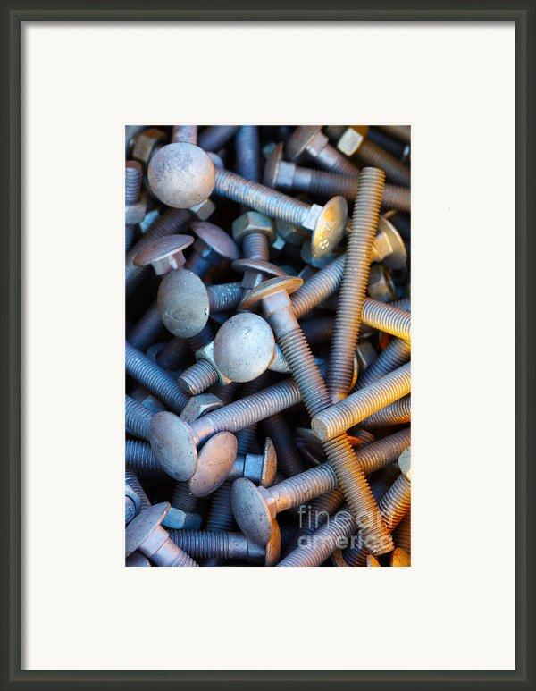 Bunch Of Screws Framed Print By Carlos Caetano