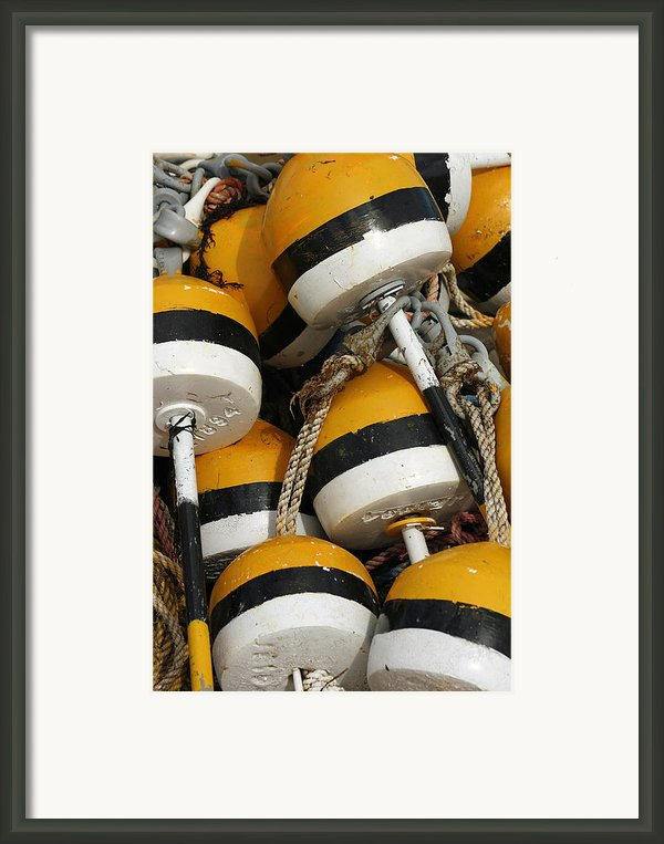 Buoys Framed Print By Cindi Ressler