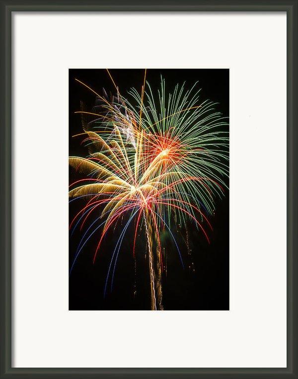 Bursting In Air Framed Print By Garry Gay