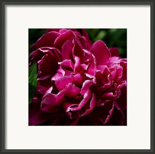 But For A Moment Framed Print By Rona Black