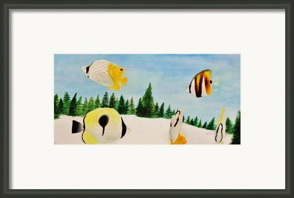 Butterfly Fish Framed Print By Savanna Paine