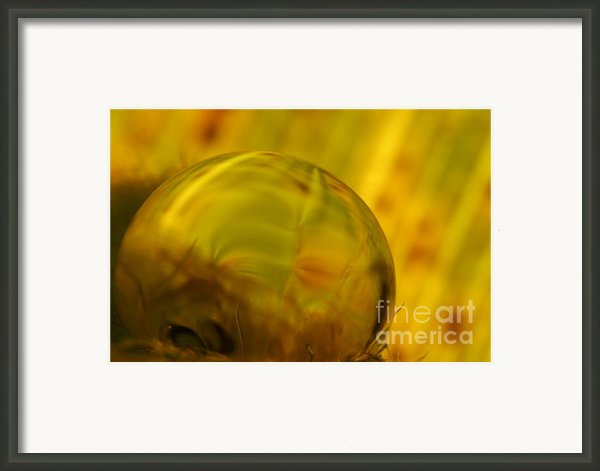 C Ribet Orbscape 0732 Framed Print By C Ribet
