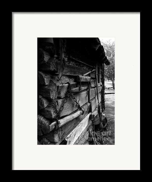 Cabin Wall Ii Framed Print By Julie Dant