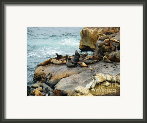 California Dreaming Framed Print By Mary Machare