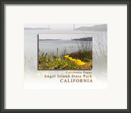 California Poppies Overlook Golden Gate Bridge - Angel Island State Park California Hk Framed Print By David Rigg