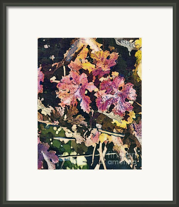 California Vineyard Series Fall Grape Leaves Framed Print By Artist And Photographer Laura Wrede