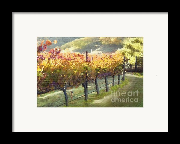 California Vineyard Series Morning In The Vineyard Framed Print By Artist And Photographer Laura Wrede