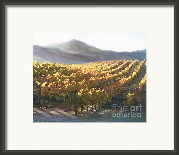 California Vineyard Series Vineyard In The Mist Framed Print By Artist And Photographer Laura Wrede