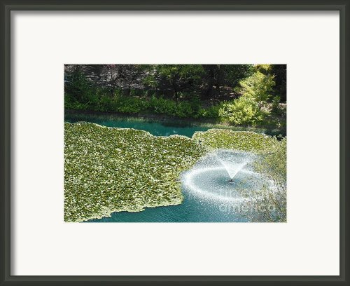Calistoga Summer Framed Print By Mini Arora
