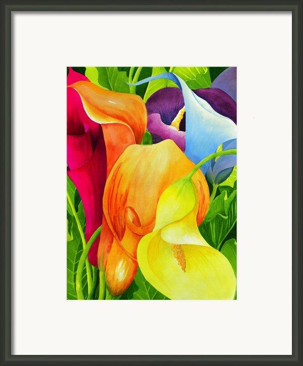 Calla Lily Rainbow Framed Print By Janis Grau