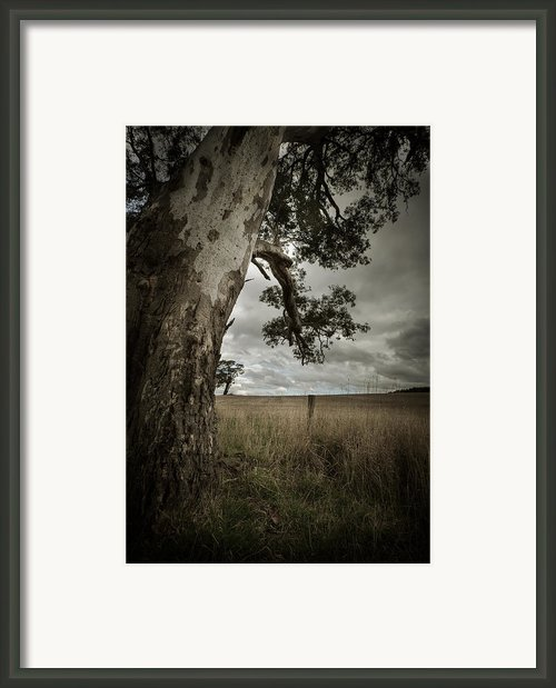 Calm Before The Storm Framed Print By Amy Weiss